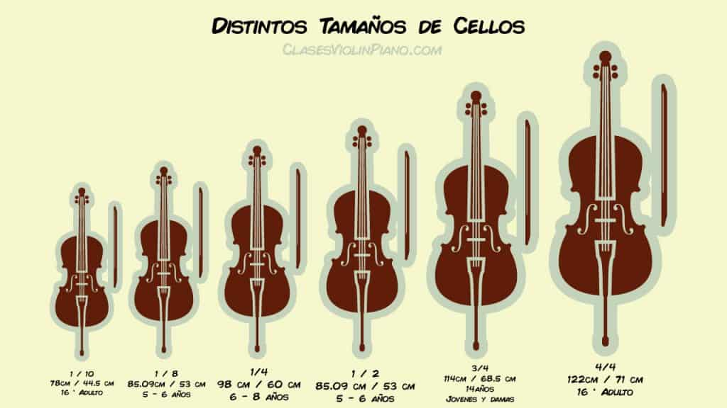 Tamaños de cellos 1