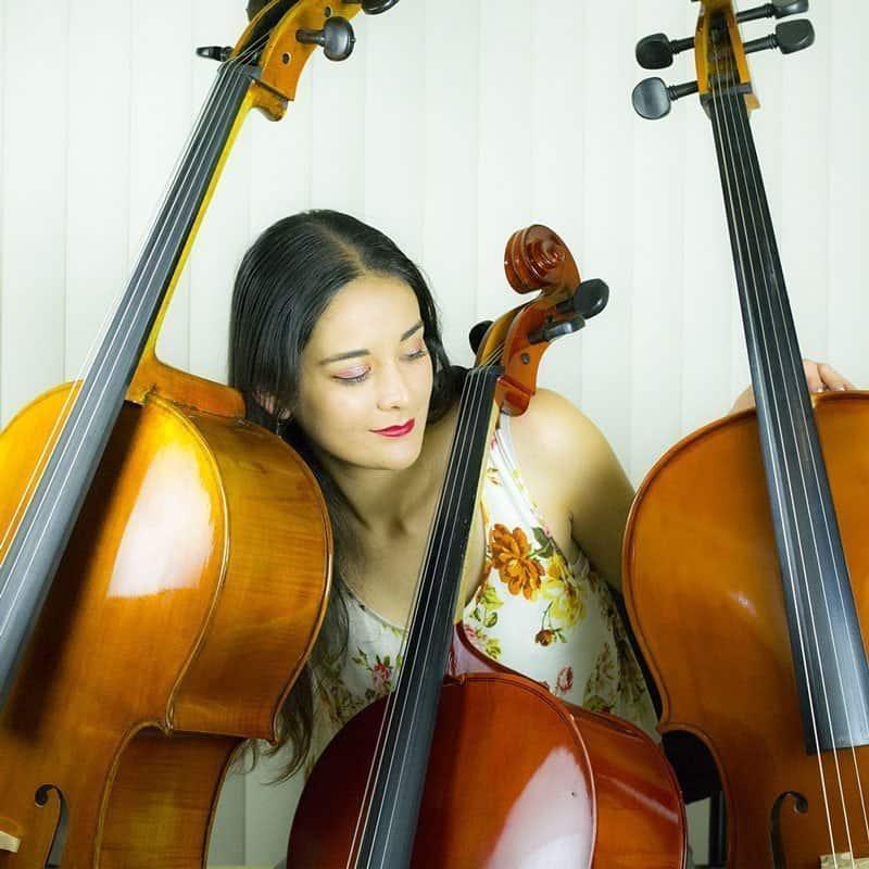 tamaños de cellos 2